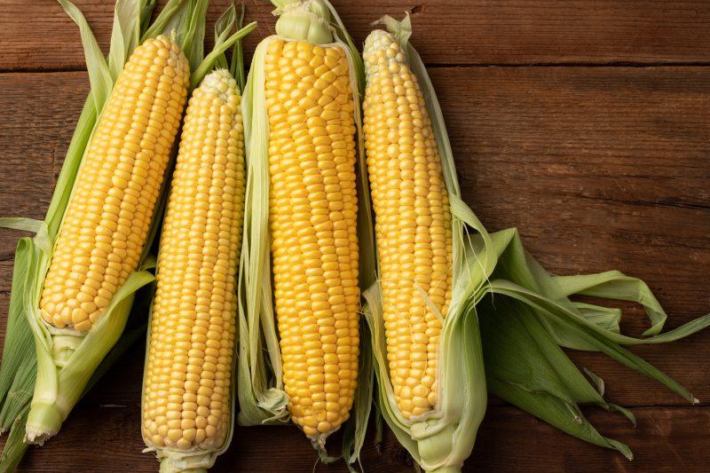 čerstvá kukurica