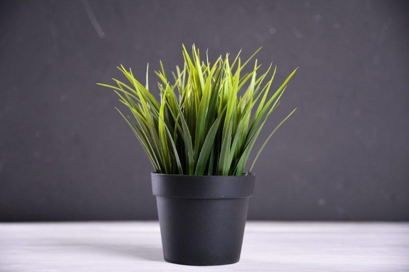 čierny plastový kvetináč
