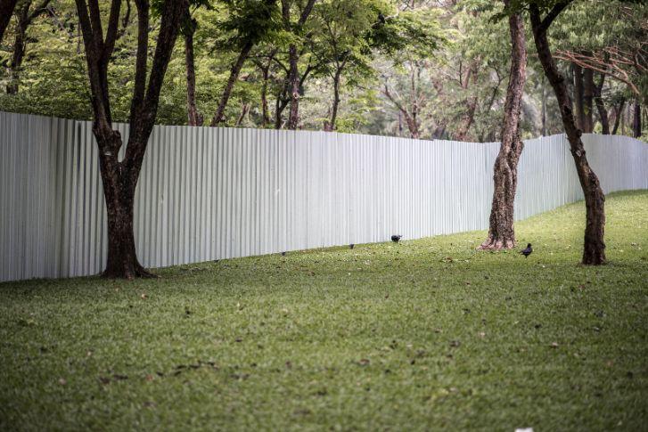 biely plot