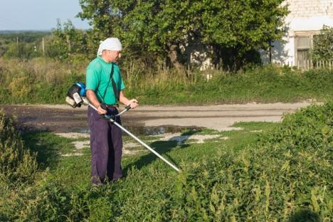 kosenie trávy krovinorezom Stihl FS 55
