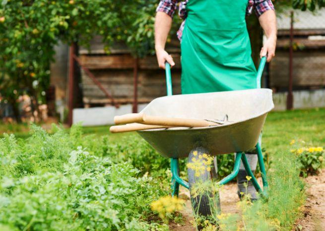 fúrik v záhrade