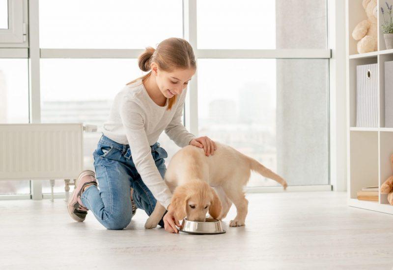 pes a dieťa