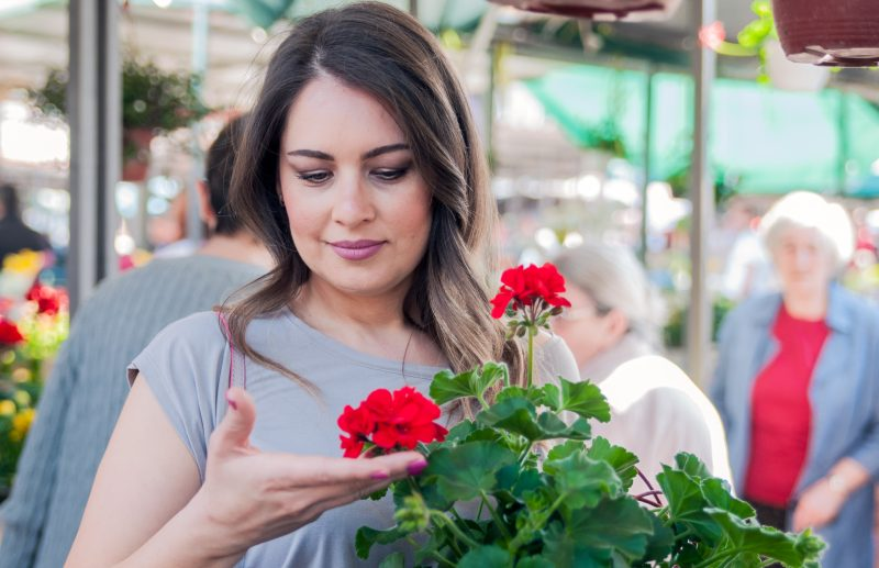 žena drží červený muškát na trhu